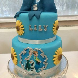 Frozen Fever Parties | Nottingham | Derby | Leicester
